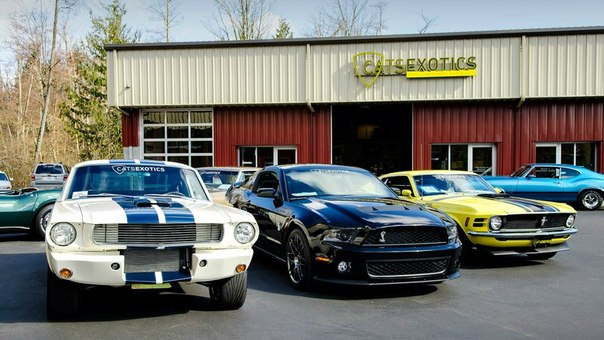 Ford Mustang GT350, Shelby GT500, Boss 302