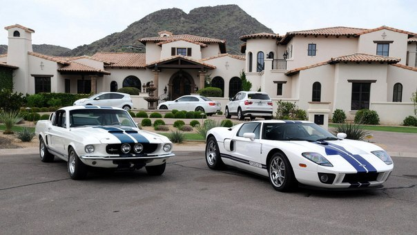 Ford Mustang Shelby GT500 & Ford GT