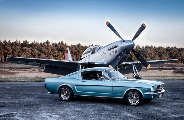 "Ford Mustang Mk1 Fastback & North American P-51 ""Mustang"""